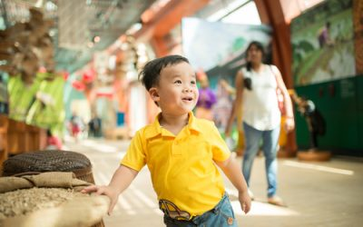 Using Cultural Institutions as Inspiration for Early Childhood Curriculum